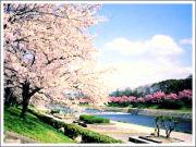 京都市でお友達づくり