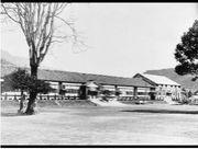 神樹会1984-85