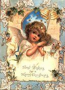 ☜天使の日☞