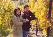 【ワイン】 ブドウ オーナー