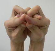 手/指でカエル作っちゃう