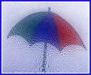 ♪雨コレクション♪