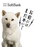 ソフトバンクの犬〜お父さん〜