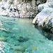 日本一美しい川を探せ!!!
