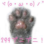 ヾ(o・ω・o)ノ゛ 299プニプニ!