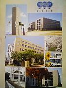 初芝堺中学校7期生