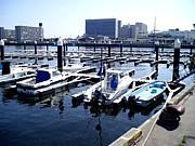 船橋ボートパーク(FBPの集い)