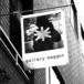 gallery maggot