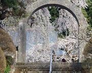 おもしろ歴史館-新裏太郎山通信