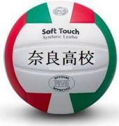 奈良高校排球部