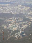 ソウル大学