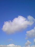 雲の上でもふもふ