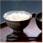 日本人なら米だろ!!