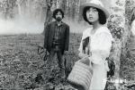 きつね(1983)