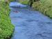 『日本の川づくり』向上委員会