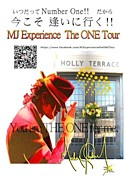 MJ Experience The ONE Tour