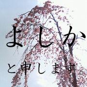 �褷���β�