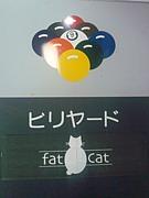 ☆fat Cat☆