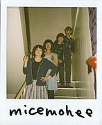 micemohee