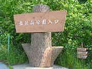弘法山(神奈川県秦野市)