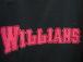 Team☆Williams