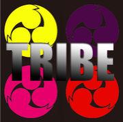 TRIBE-4-