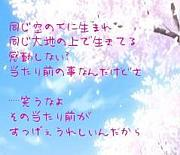 SEA-KAKU(´ー`)★1代