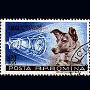 初めて宇宙に行ったのは犬です〜