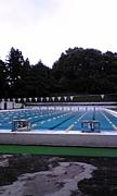 青稜中学・高等学校◇水泳部◇