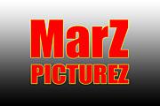 MarZ PictureZ-ライブ撮影