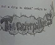 The caterpillars