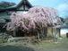 日本列島の景色