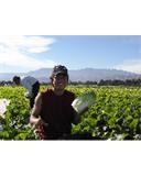 FARMERS〜食の不安定供給〜