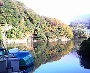 相模湖でワカサギ釣りを