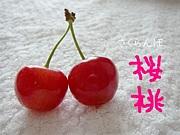 *桜桃*〜さくらんぼ〜