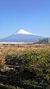 富士中央小 11年度卒 6−3