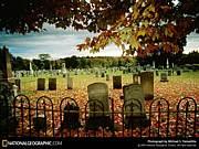*Graveyard*
