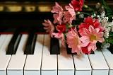 ピアノ弾きたい♪in相模原