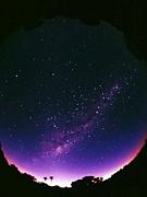 ☆板倉の星☆