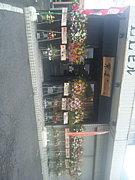 ラーメン紫美‐Shibi‐