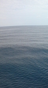海みたいな人になる