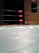 福岡県で格闘技をやってる人