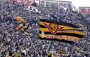 石川県の阪神タイガースファン