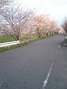 相愛大学☆奈良県民