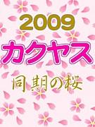 カクヤス2009同期の桜