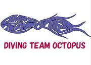 ��Octopus��