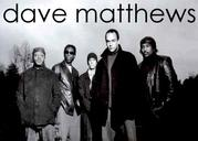 Dave matthews band lovers