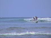 HETARE SURFER'S