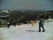 総診スキー部