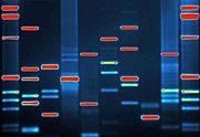 DNA Art : from uk